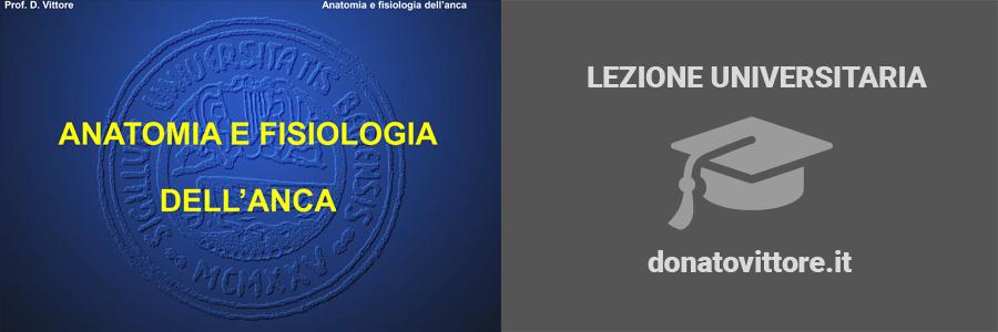 ANATOMIA E FISIOLOGIA DELL'ANCA